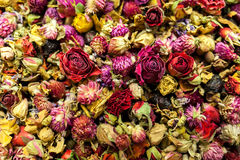 Chá das rosas vermelhas Imagem de Stock Royalty Free