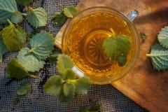 Chá de Ajwain, ammi de Trachyspermum Foto de Stock Royalty Free