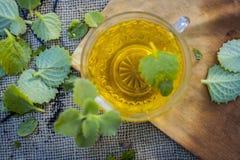 Chá de Ajwain, ammi de Trachyspermum Fotografia de Stock
