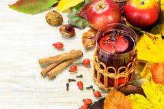 Chá de aquecimento do outono Fotografia de Stock Royalty Free