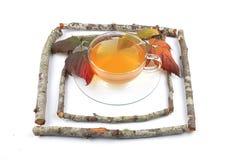 Chá de Blackberry Imagem de Stock Royalty Free