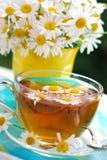 Chá de camomila Foto de Stock Royalty Free