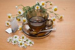 Chá de camomila Fotografia de Stock