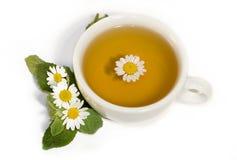 Chá de camomila erval Imagens de Stock Royalty Free