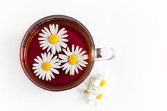 Chá de camomila no fundo branco Foto de Stock Royalty Free
