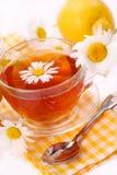 Chá de camomila no vidro Fotografia de Stock