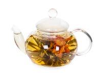 Chá de florescência chinês em um bule de vidro Fotos de Stock
