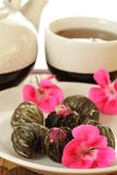 Chá de florescência Foto de Stock Royalty Free