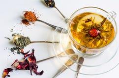 Chá de florescência ou de florescência em um copo de vidro e em colheres com vários tipos do chá no fundo branco fotografia de stock