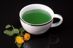 Chá de Grean Imagem de Stock