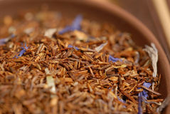 Chá de Roibush Imagem de Stock