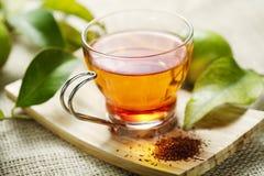 Chá de Rooibos imagens de stock