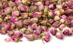 Chá de Rosa imagem de stock
