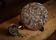 Chá de Xinyang Maojian em China imagens de stock