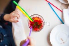 Chá do arando com limão e hortelã Imagens de Stock Royalty Free
