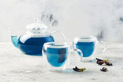 Chá do azul da flor da ervilha de borboleta Bebida erval da desintoxicação saudável imagem de stock royalty free