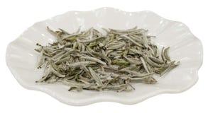 Chá do branco de Fuding Fotografia de Stock