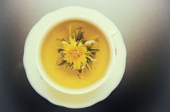 Chá do cravo-de-defunto fotografia de stock