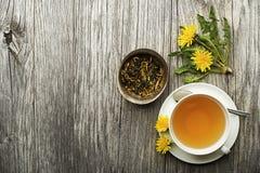 Chá do dente-de-leão Imagens de Stock Royalty Free