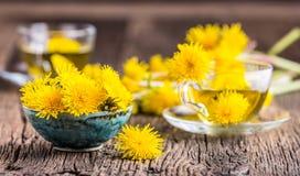 Chá do dente-de-leão Flores do dente-de-leão e copos de chá amarelos Fotografia de Stock Royalty Free