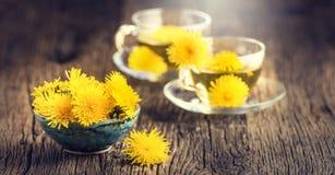 Chá do dente-de-leão Flores do dente-de-leão e copos de chá amarelos Foto de Stock