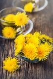 Chá do dente-de-leão Flores do dente-de-leão e copos de chá amarelos Fotos de Stock Royalty Free