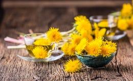 Chá do dente-de-leão Flores do dente-de-leão e copos de chá amarelos Imagens de Stock
