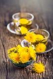 Chá do dente-de-leão Flores do dente-de-leão e copos de chá amarelos Foto de Stock Royalty Free