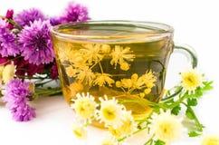 Chá do frio com as flores do Linden e das ervas Backgroun branco imagens de stock royalty free