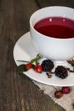 Chá do fruto Fotografia de Stock