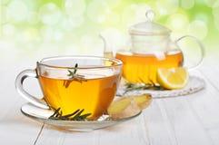 Chá do gengibre Foto de Stock Royalty Free