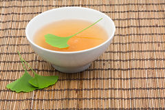 Chá do Ginkgo imagem de stock
