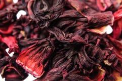 Chá do hibiscus Foto de Stock