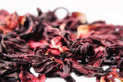 Chá do hibiscus Fotos de Stock Royalty Free
