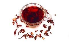 Chá do hibiscus em um copo de vidro Imagem de Stock