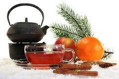 Chá do inverno Imagens de Stock Royalty Free