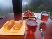 Chá do inverno Fotos de Stock Royalty Free