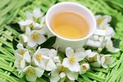 Chá do jasmim Fotografia de Stock
