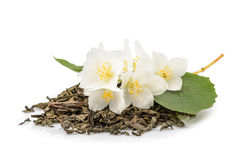 Chá do jasmim com as flores do jasmim isoladas no fundo branco Imagens de Stock