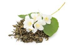 Chá do jasmim com as flores do jasmim isoladas no fundo branco Fotografia de Stock