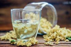Chá do jasmim em um copo de vidro no fundo da placa velha da fatura Imagem de Stock
