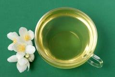 Chá do jasmim no verde Foto de Stock Royalty Free