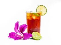 Chá do limão Fotos de Stock