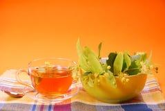 Chá do Linden Fotografia de Stock