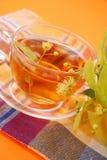 Chá do Linden Foto de Stock
