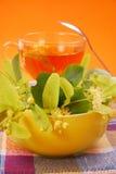 Chá do Linden Imagens de Stock