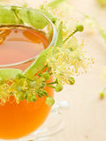 Chá do Linden Imagem de Stock Royalty Free
