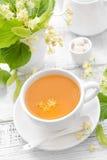 Chá do Linden Fotos de Stock Royalty Free