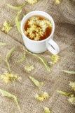 Chá do Linden na serapilheira fotos de stock