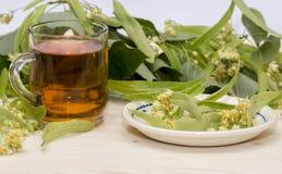 Chá do Linden nas flores de um copo do vidro e nas folhas do Linden Imagens de Stock Royalty Free